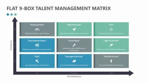 Flat 9-Box Talent Management Matrix
