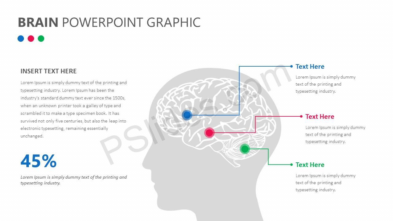 Brain PowerPoint Graphic Slide1