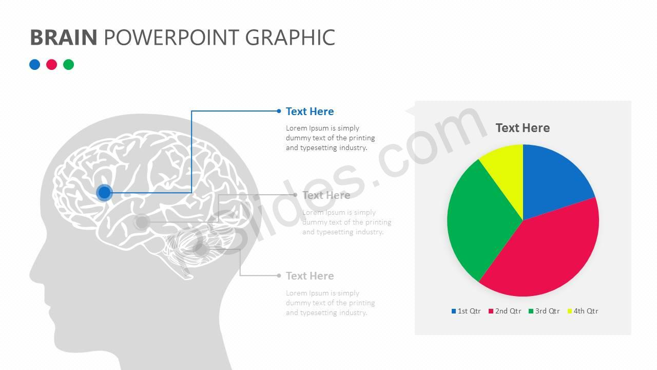 Brain PowerPoint Graphic Slide2