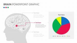 Brain PowerPoint Graphic
