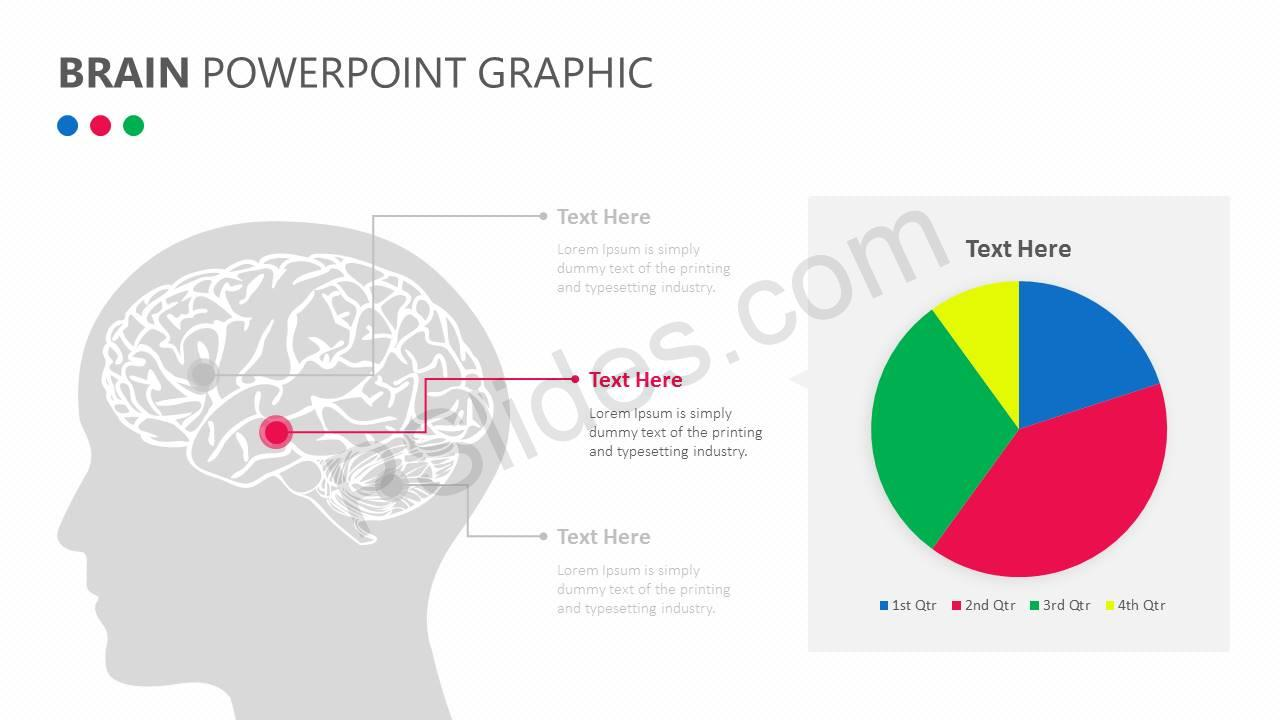 Brain PowerPoint Graphic Slide3