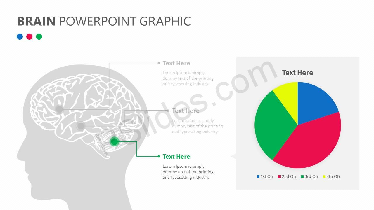 Brain PowerPoint Graphic Slide4