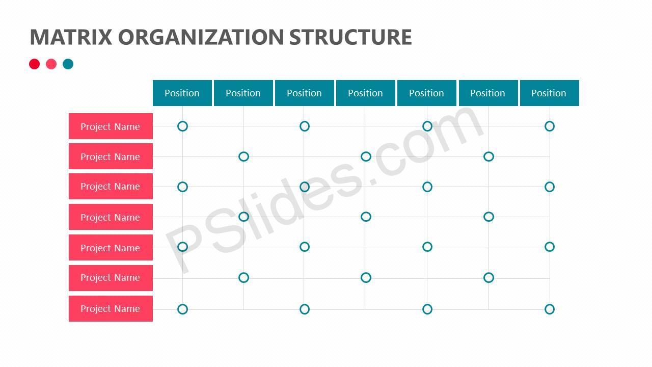 Matrix Organization Structure Slide1