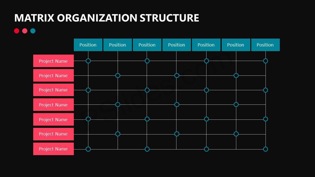 Matrix Organization Structure Slide4