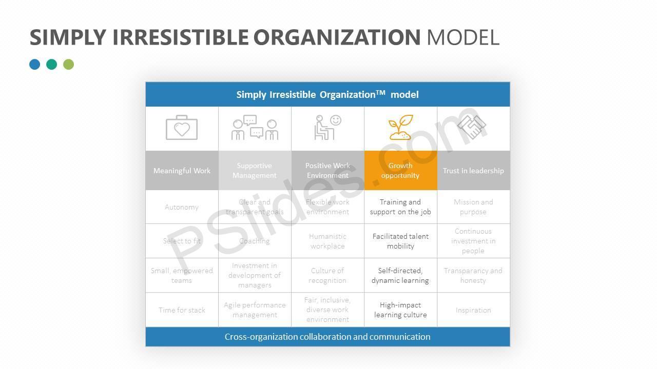 Simply-Irresistible-Organization-Model-Slide3
