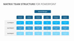 Matrix Team Structure for PowerPoint