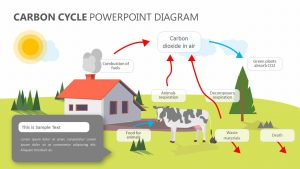Carbon Cycle PowerPoint Diagram