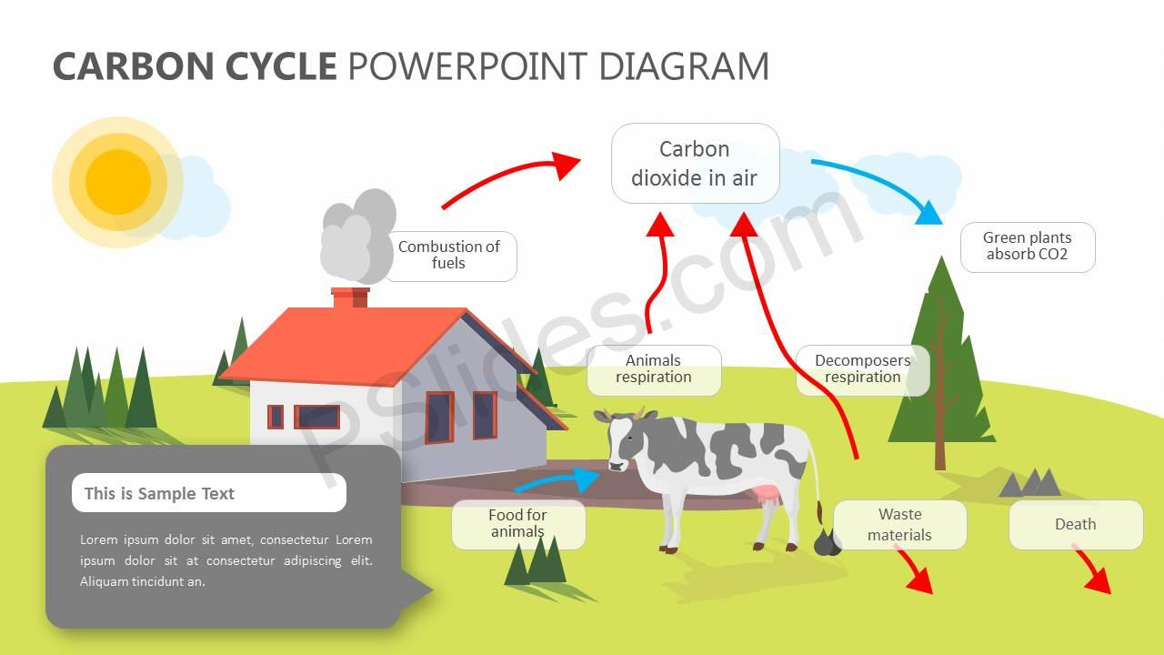 Carbon-Cycle-PowerPoint-Diagram-Slide1