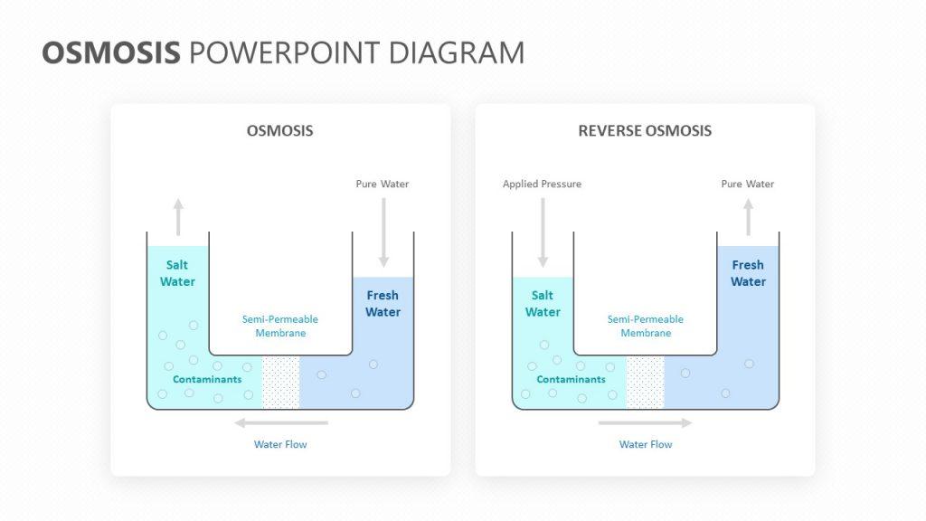 Osmosis PowerPoint Diagram