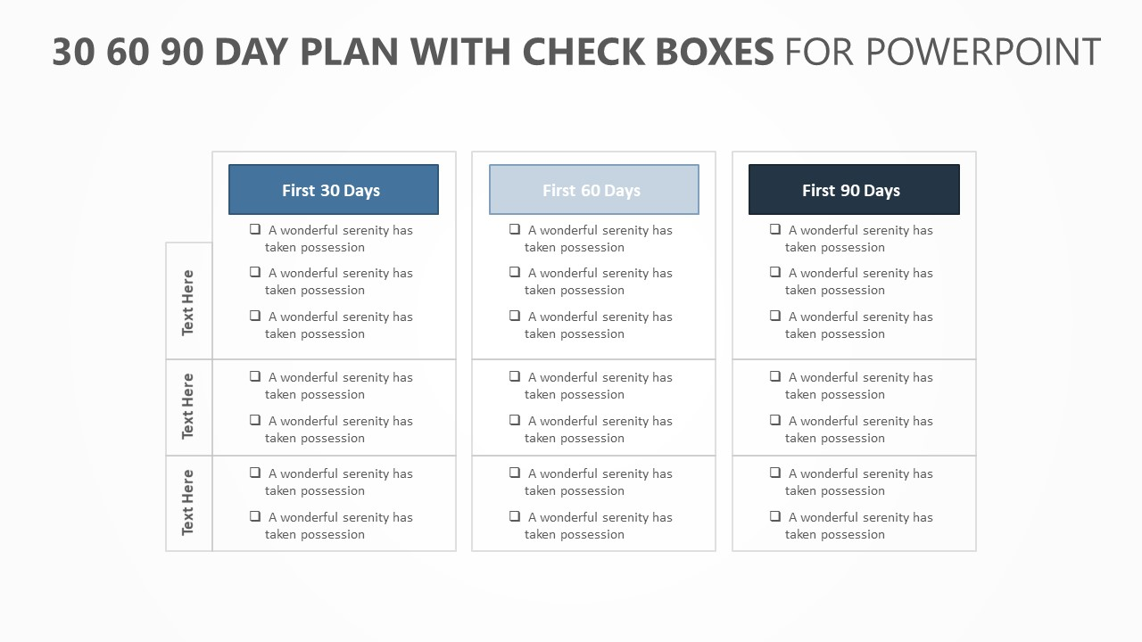 30 60 90 Day Plan with Check boxes (1)