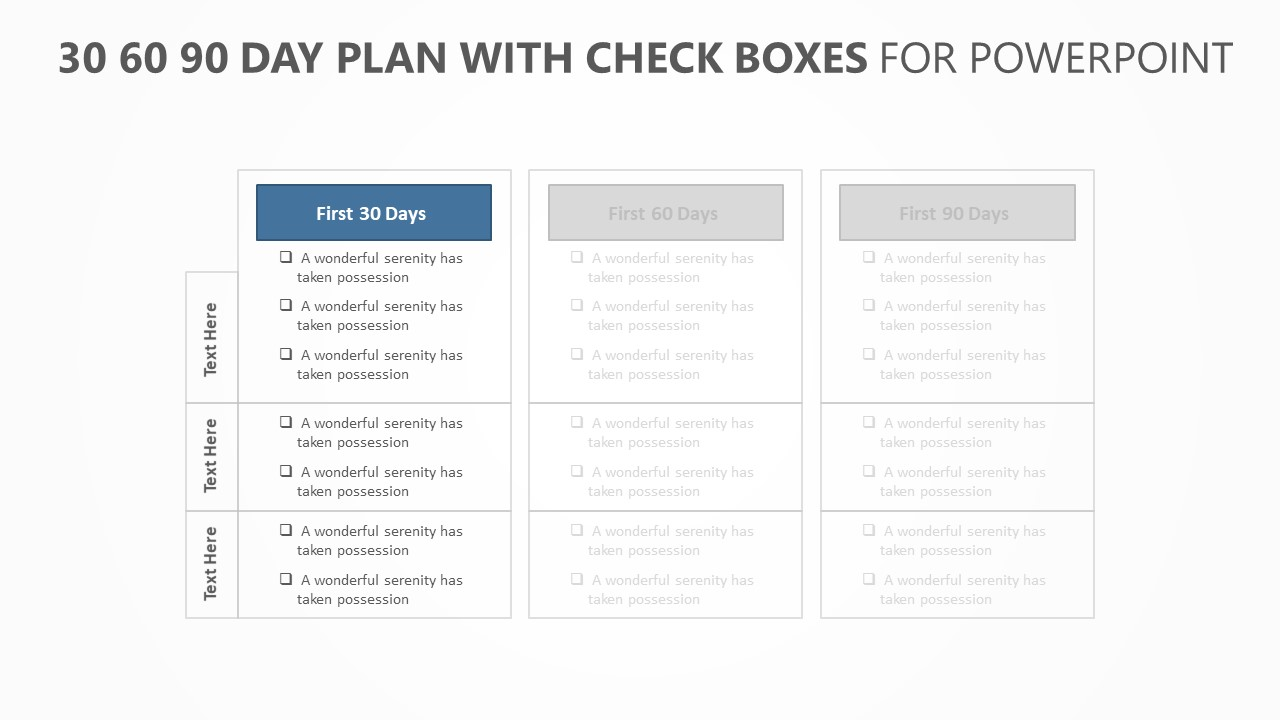 30 60 90 Day Plan with Check boxes (2)