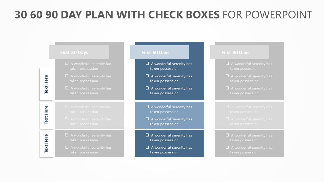 30 60 90 Day Plan with Check boxes (4)