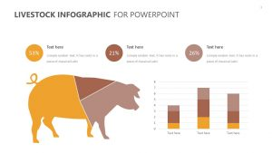 Livestock Infographic for PowerPoint